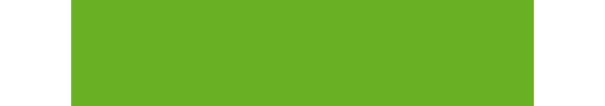 Green Party Southend Manifesto - Crime & Antisocial Behaviour
